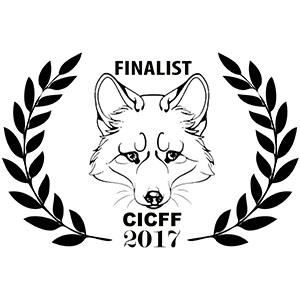 Calcutta International Cult Film Festival - 2017 Finalist Laurel - I Do Documentary